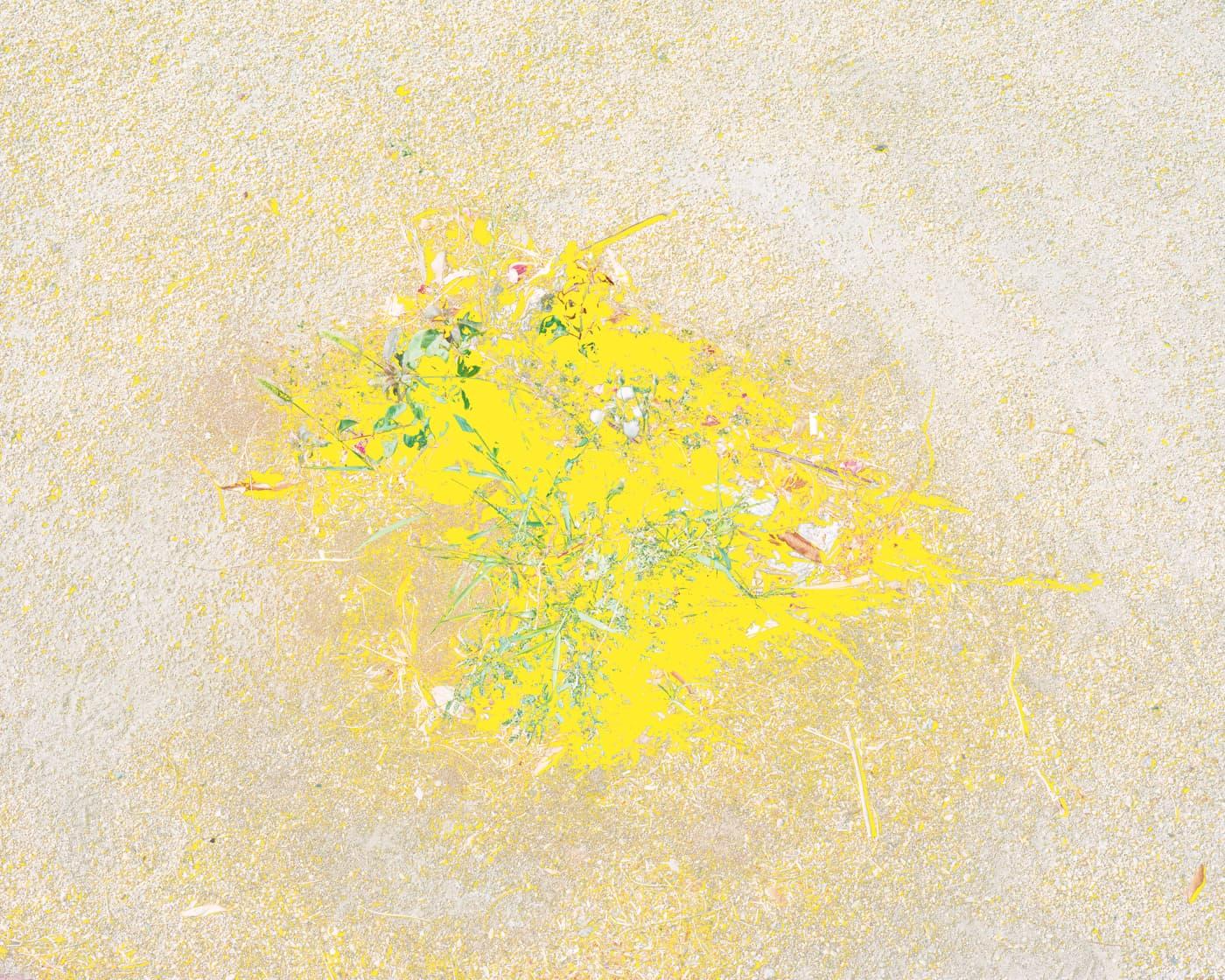 007-aaron-rothman%E2%80%93signal-noise